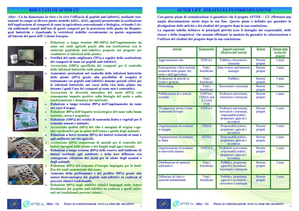 after-cu-communication-plan-ita_page_2